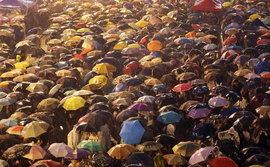 Người biểu tình che dù ngồi dưới mưa. Ảnh: SCMP