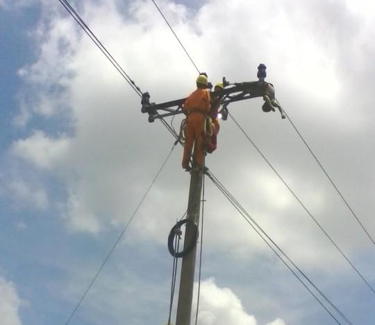 Trèo cột điện bắt chim, học sinh lớp 6 bị điện giật chết