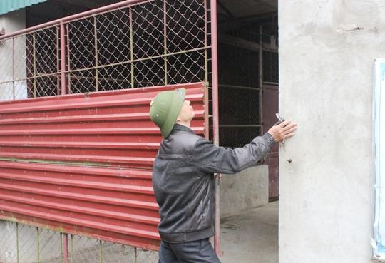 Đột nhập trại nuôi hổ lớn nhất ở Thanh Hóa - Ảnh 4.