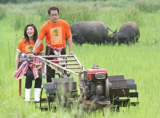 Bà Yingluck và cựu nghị sĩ đảng Pheu Thai Jirayu Huangsap cày ruộng trong chiến dịch tranh cử năm 2011.  Ảnh: Nation