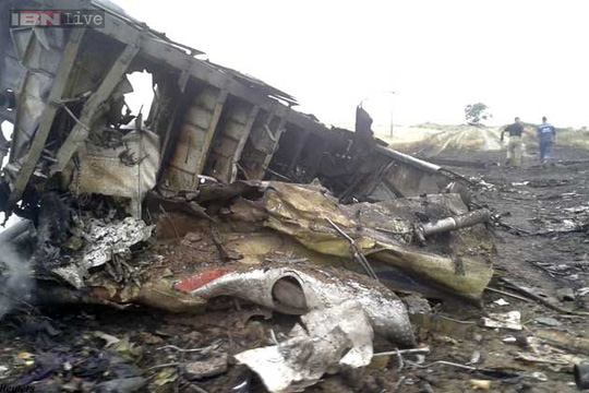 Malaysian airliner with 295 on board crashes in Ukraine near Russian border
