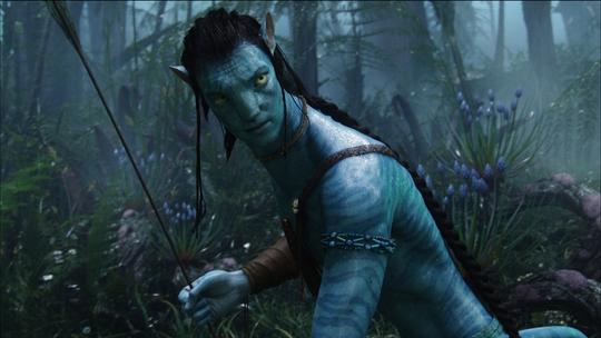 Sao phim Avatar bị bắt vì đấm vào mặt nhiếp ảnh gia