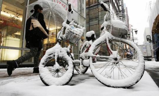 Tuyệt phủ kín khu mua sắm Ginza của Tokyo. Ảnh: Reuters