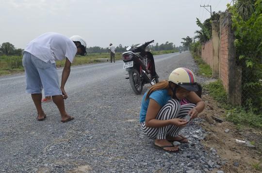 Sáng 11-12, nhiều người tiếp tục đi nhặt, có người huy động cả gia đình tham gia công việc đột xuất này