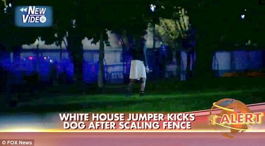 Kẻ đột nhập nhảy qua rào vào khuôn viên Nhà Trắng...