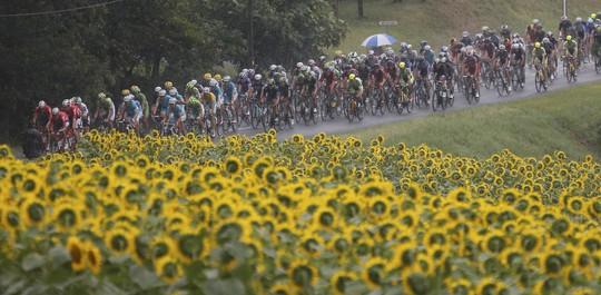 Những khoảnh khắc ấn tượng của Tour de France 2014