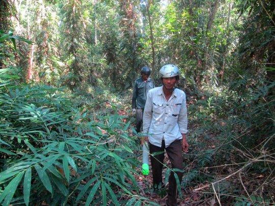 Hai chú Yên và Hiếu tìm nơi đặt ống trúm trong rừng Suối Lam.