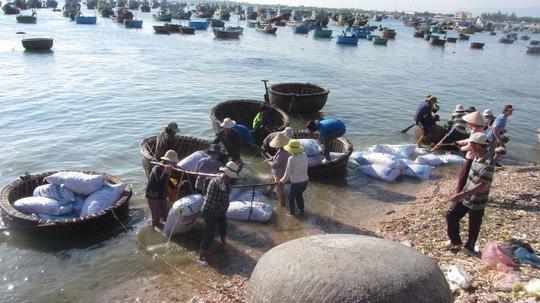 Ngư dân gánh sò lên bờ