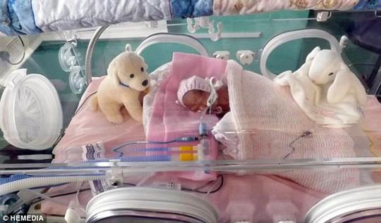 Bé Emily chào đời ở tuần thứ 24 và chỉ nặng 538 g