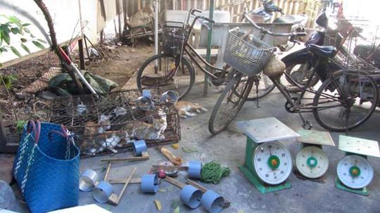 Tang vật thu giữ gồm 30 con mèo và nhiều dụng cụ hành nghề của nhóm bắt trộm