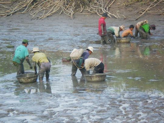Cảnh tát đìa bắt cá ăn Tết khá nhộn nhịp tại khu vực biên giới huyện Tịnh Biên, tỉnh An Giang.