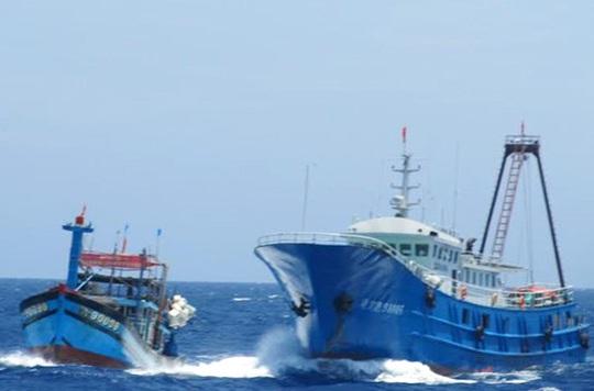 Tàu cá vỏ sắt của Trung Quốc (phải) hung hăng ngăn chặn một tàu cá vỏ gỗ của Việt Nam ở gần khu vực giàn khoan 981 hạ đặt trái phép trong vùng biển Hoàng Sa của Việt Nam