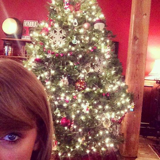 """Những bức ảnh mừng giáng sinh """"nhí nhảnh"""" của sao"""