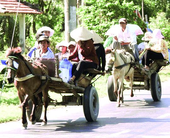 Xe ngựa diễu hành dịp lễ, Tết ở vùng Bảy Núi, tỉnh An Giang. Ảnh: T.V