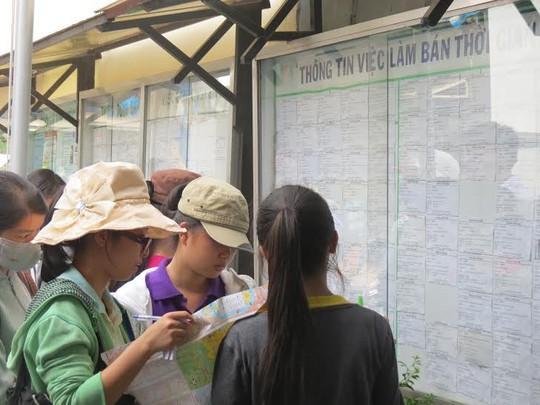 Sinh viên tìm việc tại Trung tâm Hỗ trợ học sinh, sinh viên TP HCM