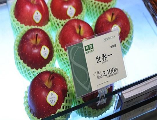 """Tại các siêu thị, mỗi trái táo Sekai-ichi của Nhật Bản được bán với giá 21 USD (tương đương khoảng 420.000 đồng). Trong tiếng Nhật, Sekai-ichi được hiểu là """"tốt nhất thế giới"""", nhờ được rửa bằng mật ong và đóng gói bằng tay để giữ độ thanh mát."""