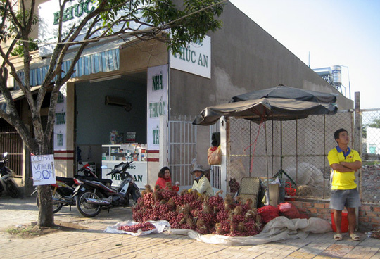 Vì là một trong những loại rau củ không thể thiếu trong 3 ngày Tết nên hành tím đang được bày bán khắp nơi với giá rất cao