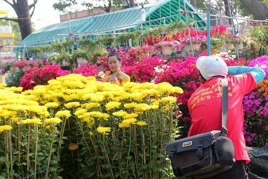 Người mua hoa thì ít, nhưng dịch vụ chụp hình tại các công viên thì đắt khách.