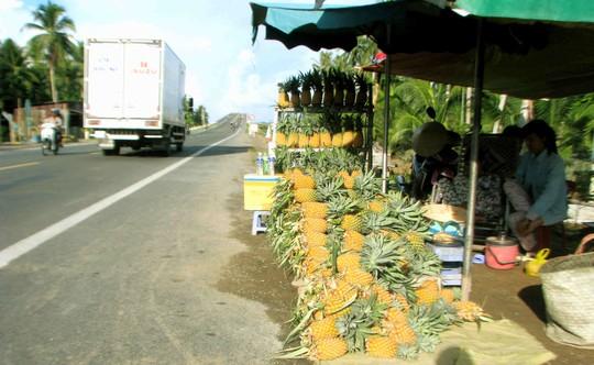 Những trái khóm bắt mắt được chào bán ven quốc lộ 63