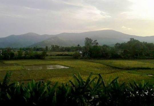 Khu vực núi Nưa, nơi Hưng đã giở trò đồi bại với chị L.