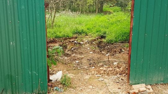 Lối cổng nhỏ đi vào khu tập kết gỗ khủng