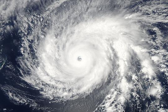 Siêu bão Maysak do Cơ quan Hàng không Vũ trụ Mỹ (NASA) chụp hôm 31-3. Ảnh: NASA Goddard MODIS Rapid Response Team