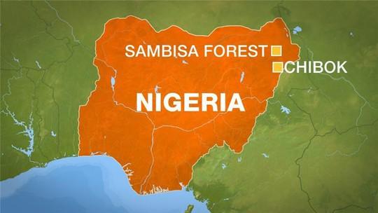 Khu rừng Sambisa gần Chibok - nơi Boko Haram bắt cóc gần 300 nữ sinh hồi năm ngoái. Ảnh: Al Jazeera