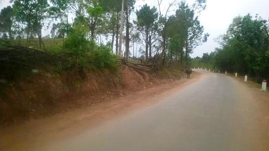 Khu vực Khe Mây- U Bò (dọc Quốc lộ 22), nơi xảy ra vụ nổ thương tâm khiến 2 người chết, 2 người nguy kịch
