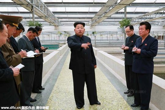Nhà lãnh đạo Kim Jong-un thăm trại nuôi rùa nước ngọt. Ảnh: DFIC