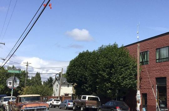Đồ chơi tình dục treo la liệt trên dây điện ở TP Portland, bang Oregon – Mỹ. Ảnh: Reuters