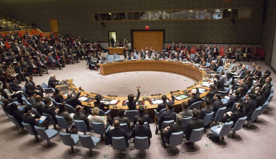 UNSC, December 30, 2014 in New York.