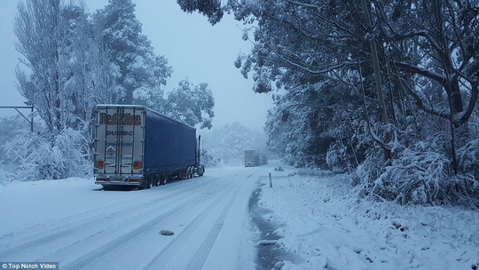 Trucks were stranded on the Great Western Highway near Medlow bath
