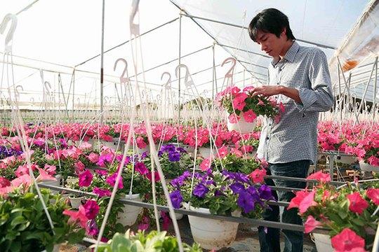 Anh Nguyễn Anh Duy chăm sóc vườn hoa treo. Ảnh: Khánh Phúc
