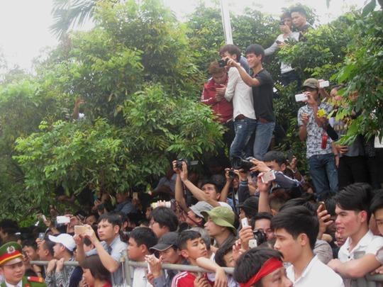 Do lượng người xem hội quá đông, cây cối trở thành nơi lý tưởng để xem chém lợn