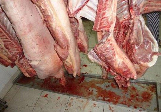 Thịt heo rỉ dịch, bơm nước bị phát hiện