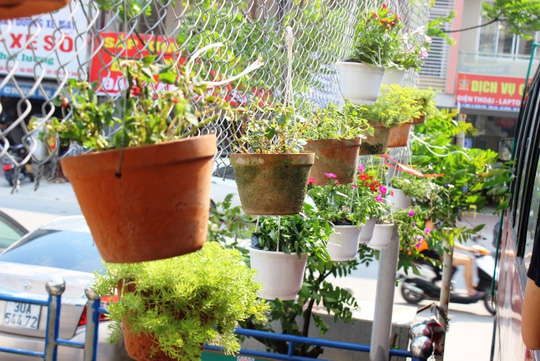Những chậu hoa nhỏ làm không gian quán cà phê độc đáo thêm phần lãng mạn