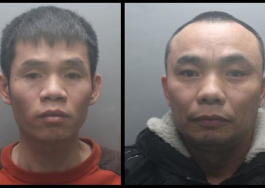 Hai người Việt nhập cư trái phép bị bắt gần đây vì tội giúp điều hành một trại cần sa ở thị trấn Hemel Hempstead - Anh Ảnh: HEMELTODAY.CO.UK