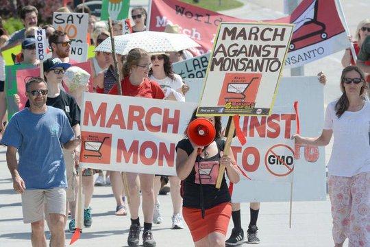 Hàng trăm người ở TP Kelowna - Canada tuần hành phản đối cây trồng biến đổi gien hôm 23-5 Ảnh: KELOWNA DAILY COURIER