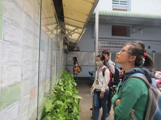SV tìm việc làm Tết tại Trung tâm hỗ trợ học sinh, SV TP HCM