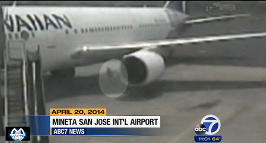Bà Adriana đang lang thang bên cạnh một chiếc máy bay. Ảnh: ABC 7 News