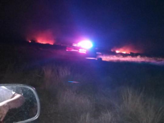 Chiếc F-16 của lực lượng Vệ binh Quốc gia Mỹ bị rơi gần thị trấn Douglas, bang Arizona tối 24-6. Ảnh: Twitter