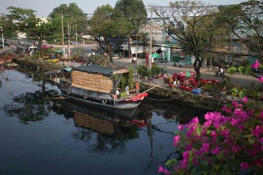Đa số các loại cây kiểng ở đây đều do các ghe xuống từ miền Tây mang lên. Hoa được bày bán dọc theo bến Bình Đông, kéo dài hơn 3 km