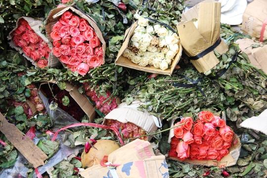 Còn rất nhiều hoa vẫn còn gói trong bao bì, tươi nhưng vẫn mang đi vứt.