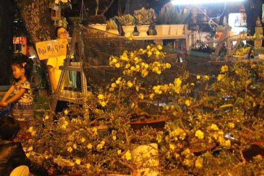 Nhiều bảng đại hạ giá được treo lên tại chợ hoa Tết công viên Lê Văn Tám.