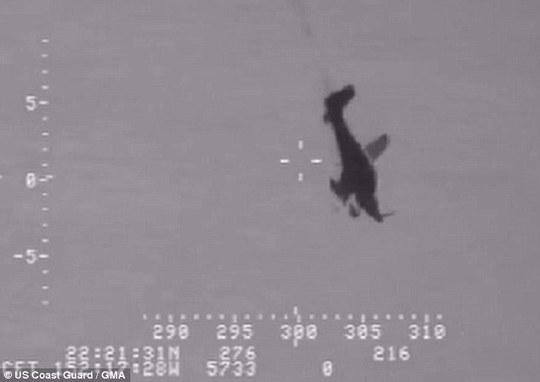 Máy bay chúi đầu xuống khi rơi. Ảnh: US Coast Guard