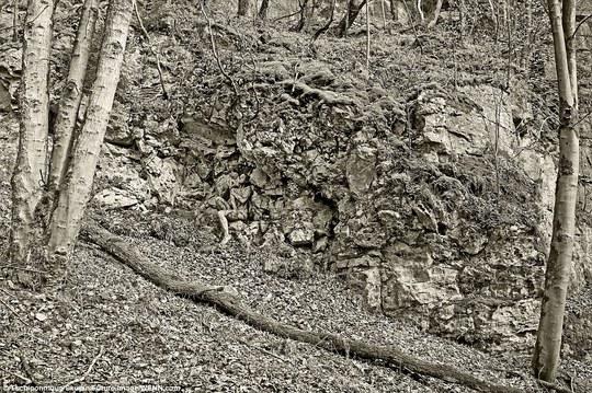 """Người mẫu """"hòa lẫn"""" với vách đá, cây rừng"""