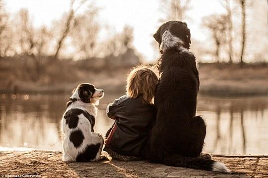 Sốt những bức ảnh siêu dễ thương giữa bé và chó