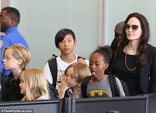 Vợ chồng Brad Pitt lần đầu hội đàm vợ chồng Hoàng tử William