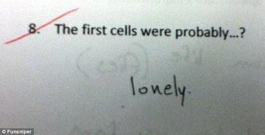Tế bào đầu tiên có lẽ... cô đơn lắm