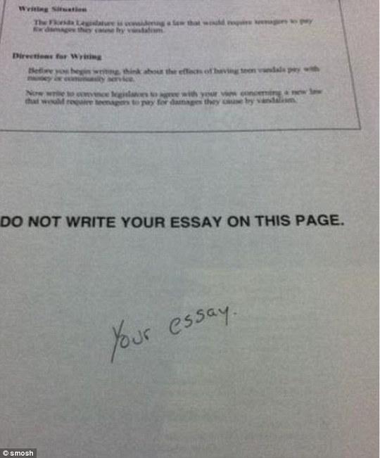 Bài luận của em